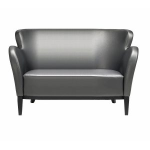 FFE furniture sofa - silver
